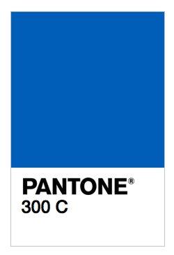 PANTONE 300 C