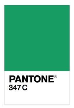 PANTONE 347 C